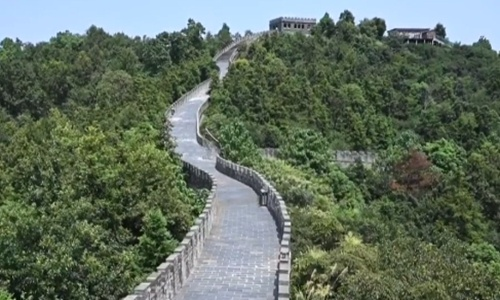 Chinese netizens debate over Great Wall replica in E China