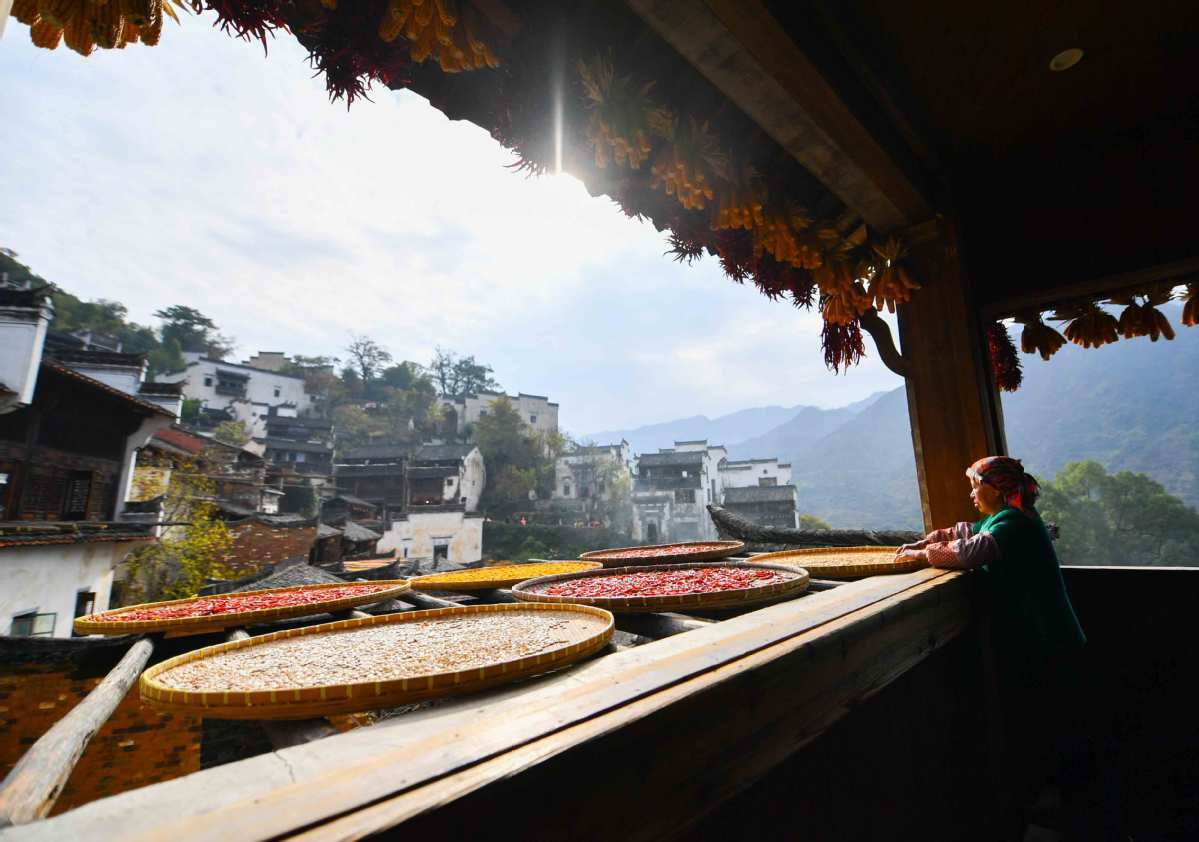 China's rural tourism rapidly recovering