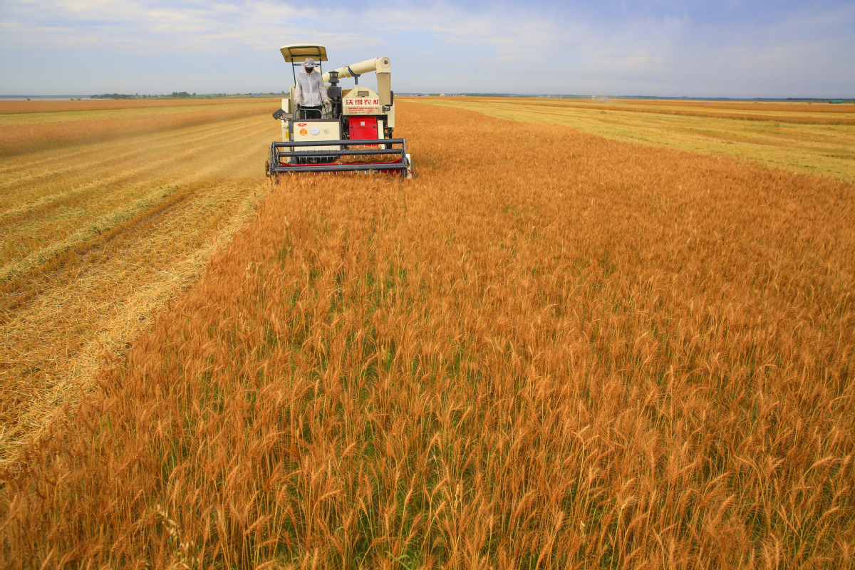China to prohibit non-agricultural use of arable land