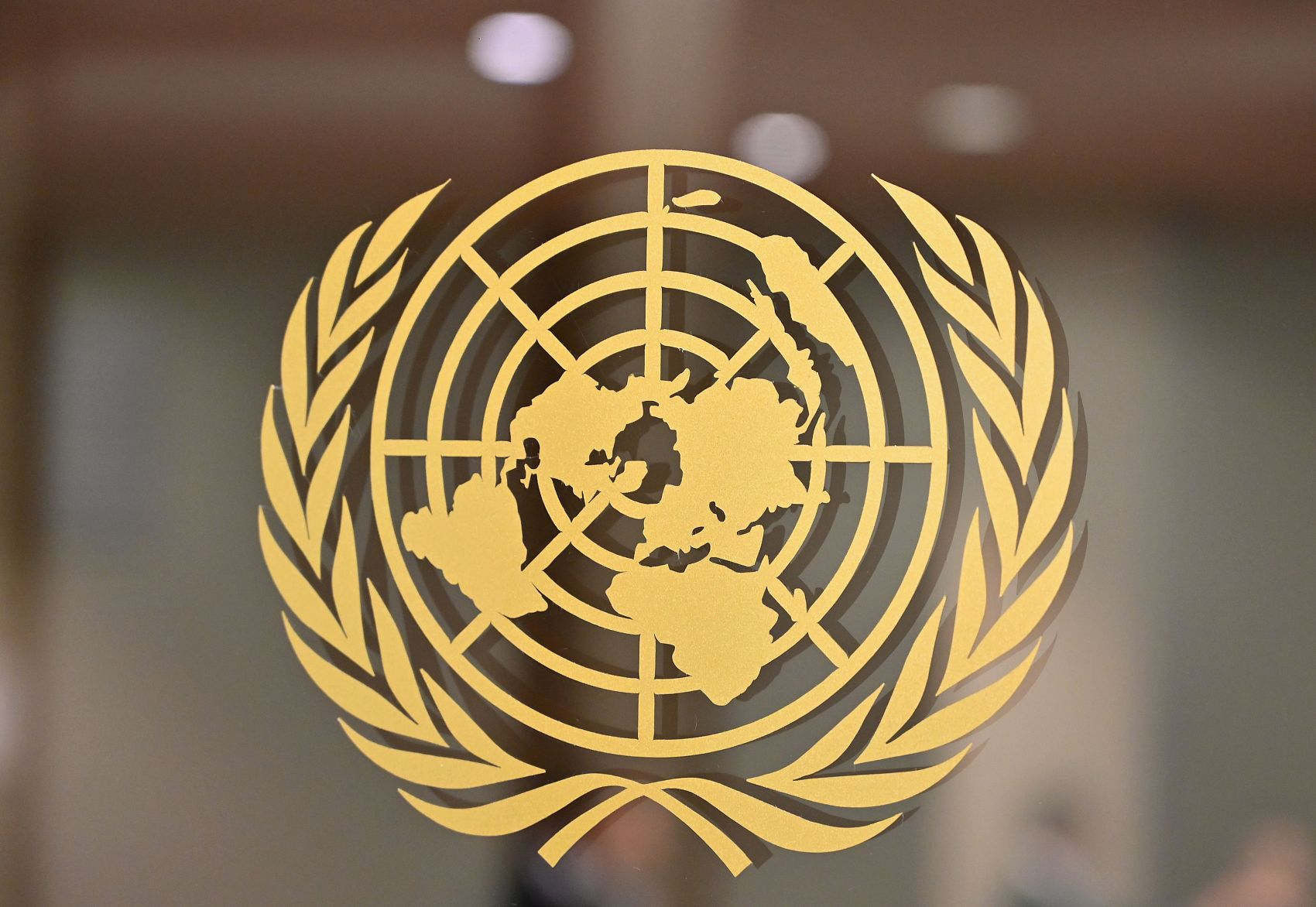 UN urges solidarity, cooperation as global COVID-19 cases top 30 million