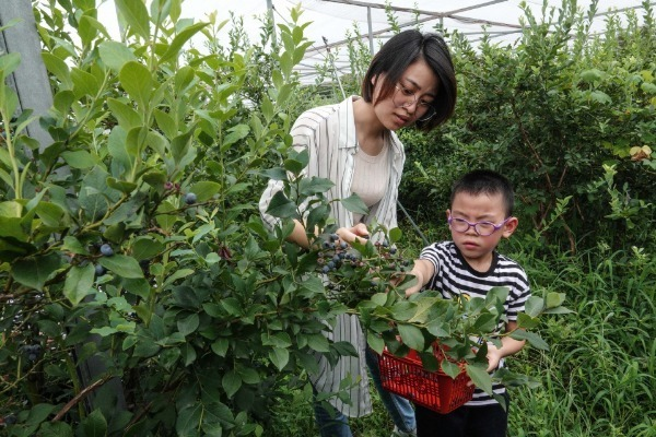 Rural tourism rebounds ahead of China's National Day holiday