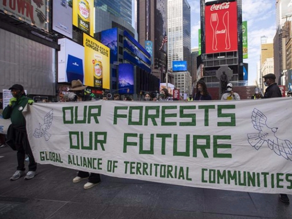 Aiming to be carbon-neutral? Don't rely on planting trees, scientists say
