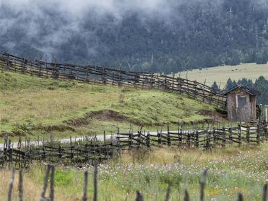 View of Lunang Township in Nyingchi, Tibet