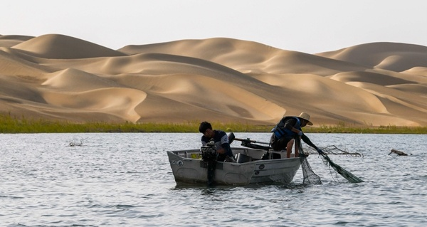 Diversified agriculture translates into better livelihood in Xinjiang