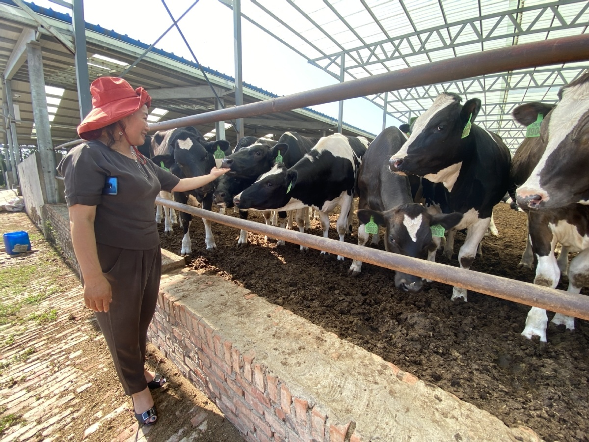 China to promote high-quality development of animal husbandry industry