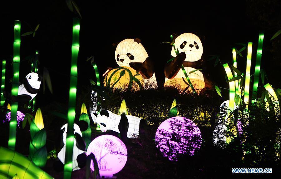 Lantern show kicks off in Chongqing