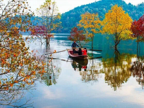 Golden Autumn scenery in Central China's Hubei