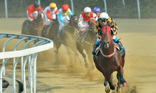 China's horse racing industry gets policy support