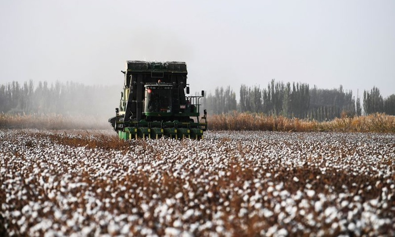 China's largest cotton growing area enters harvest season