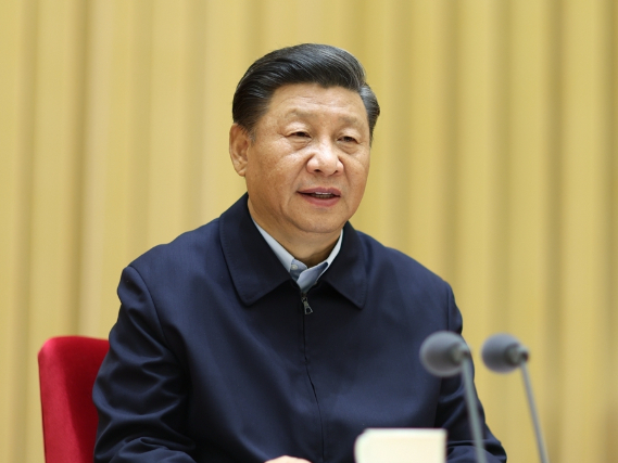 Xi stresses better understanding Chinese civilization through archaeology