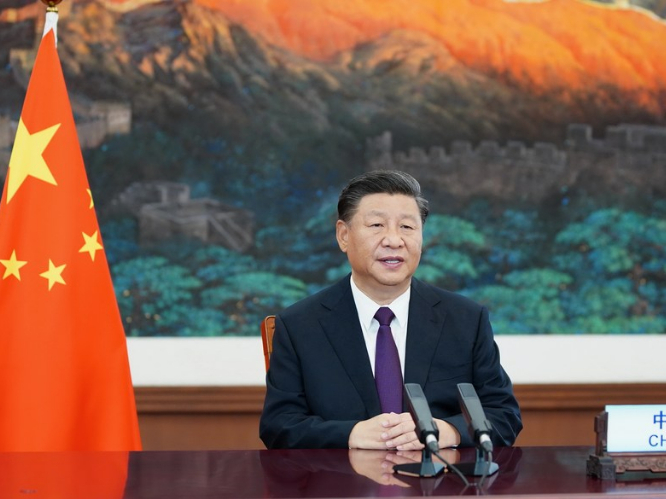 Xi calls for enhancing biodiversity conservation, global environmental governance
