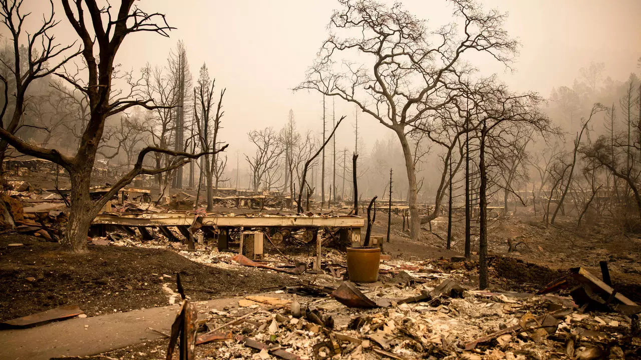 California wildfires turn beloved Napa wine spots to ash