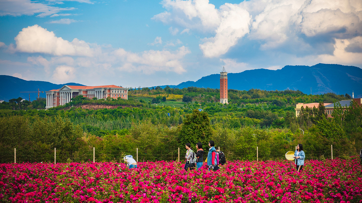 Kunming prepares to host biodiversity conference