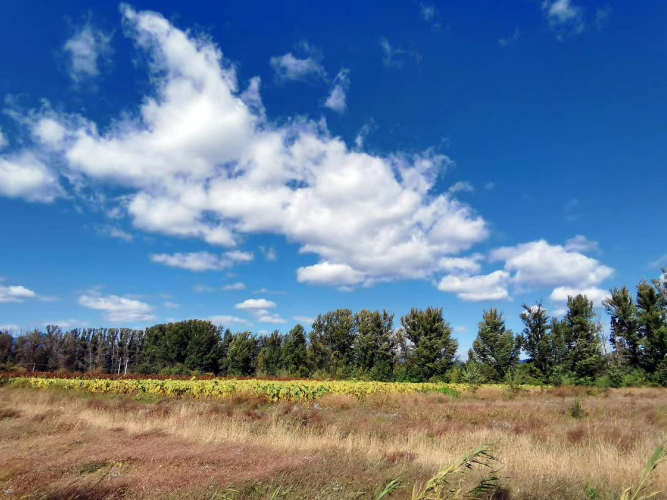 Wondrous views at Yeyahu National Wetland Park