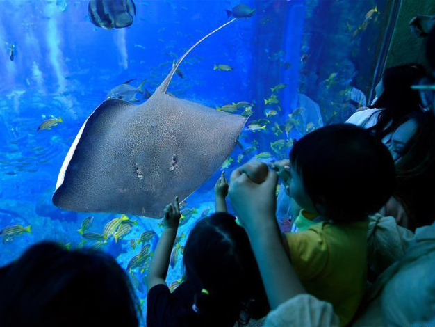 Sanya attracts tourists from all over China during holiday