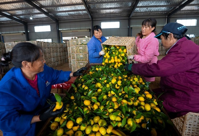 China achieves remarkable progress in livelihood improvement