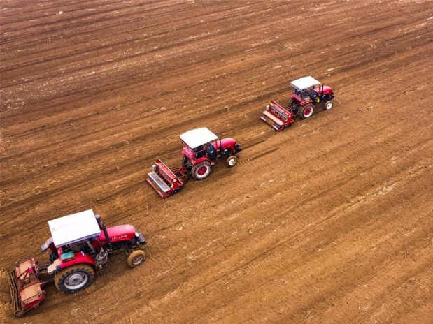 Farmers in Hebei busy with autumn farm work