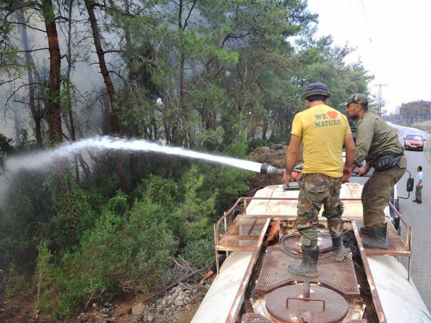 Wildfires leave landscapes of charred trees, burnt soil in Syria