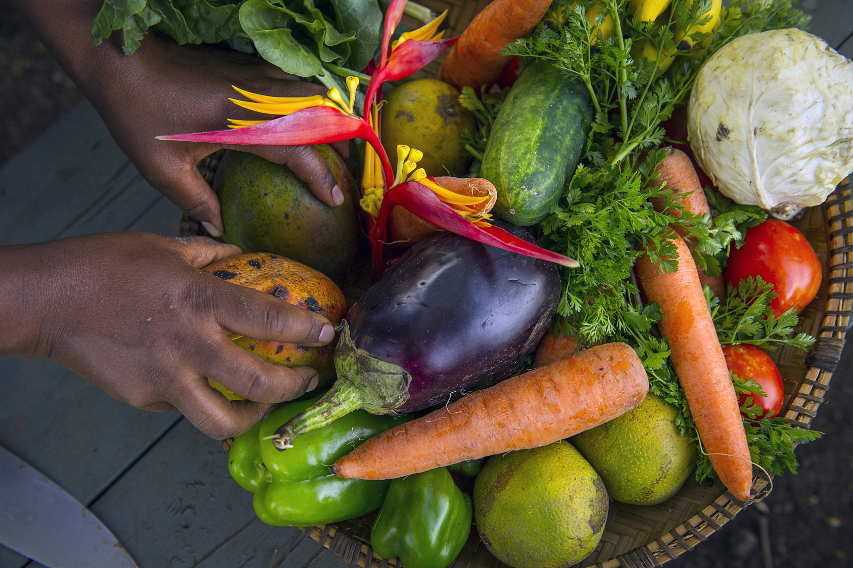 UN chief calls for efforts to ensure sustainable, healthy diets for all
