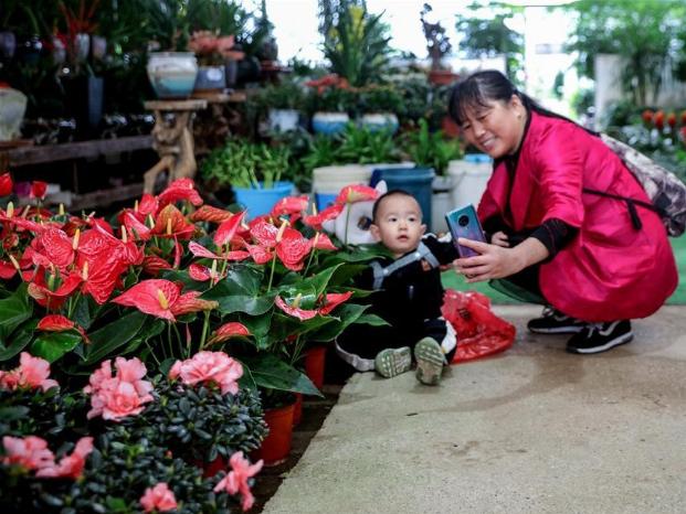 Changxing flower and tree fair kicks off in Zhejiang