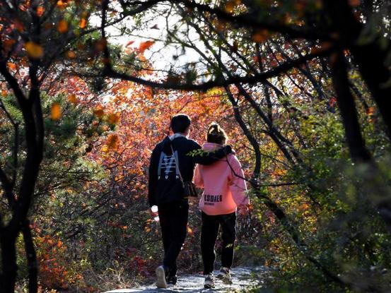 Autumn scenery at Qingtianhe scenic area in Henan