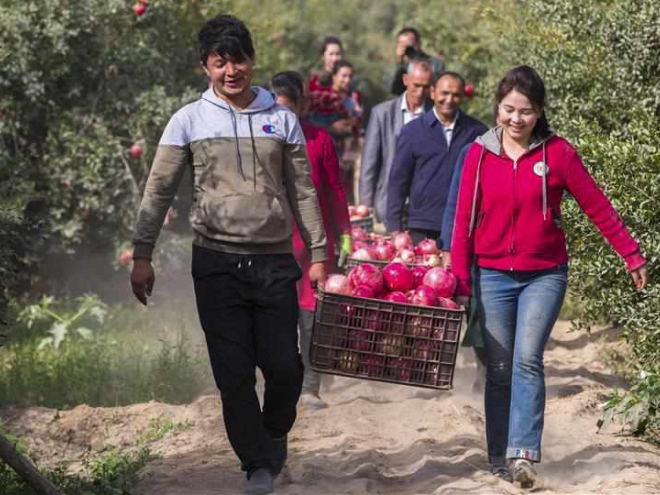 Xinjiang embraces harvest season