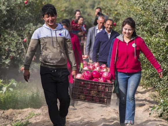 Outbound Xinjiang migrant workers enjoy higher pay, deny 'forced labor'