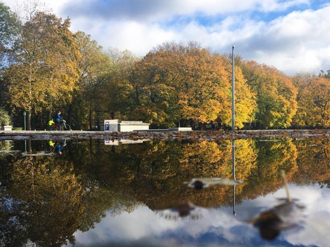 Autum view in Cinquantenaire Park in Brussels, Belgium