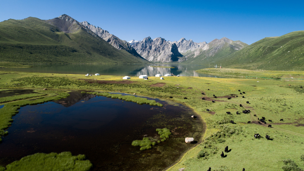 Tropical wildlife moved to Qinghai-Tibet Plateau 5,200 years ago: study