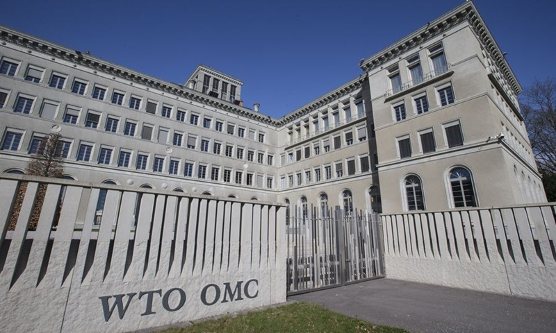 New WTO head may be shadowed by US unilateralism: expert