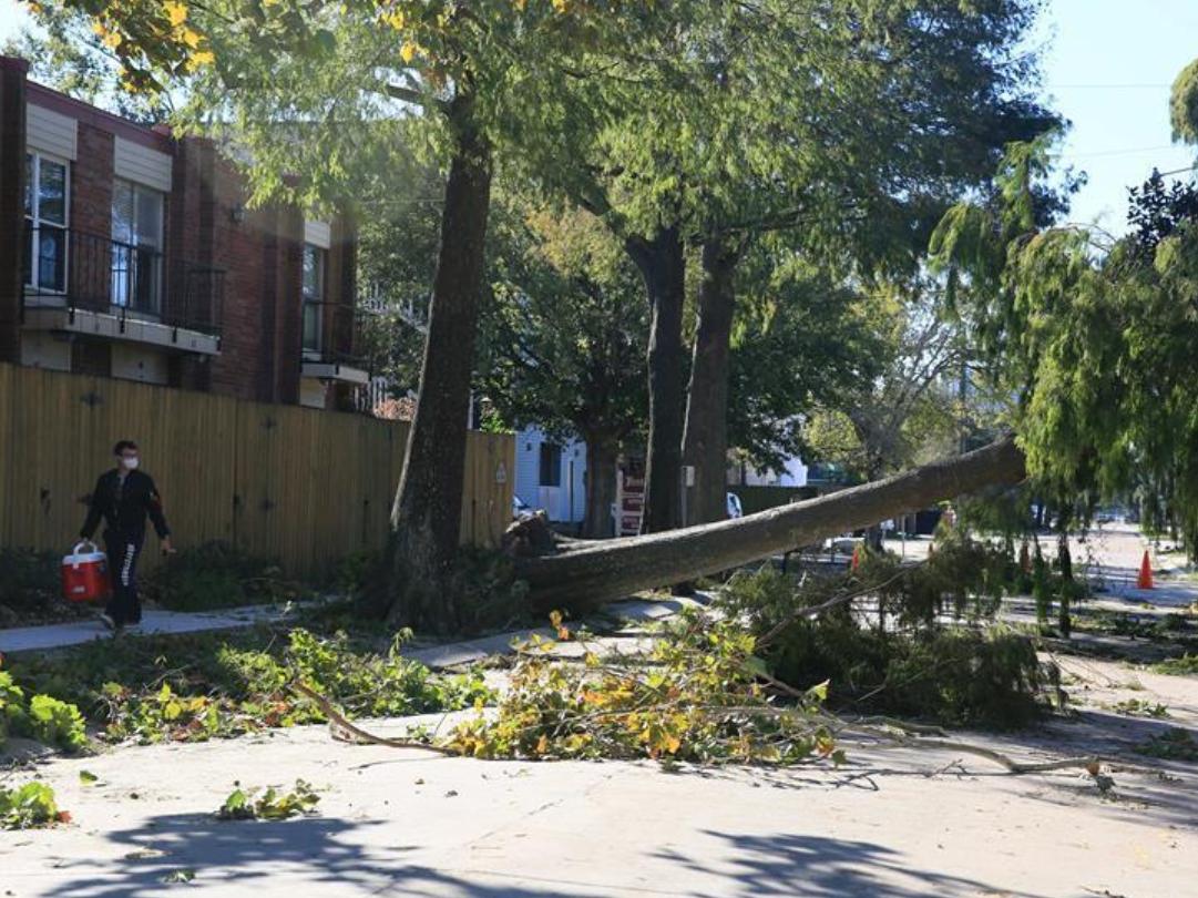 Hurricane Zeta leaves half mln without power in US Louisiana