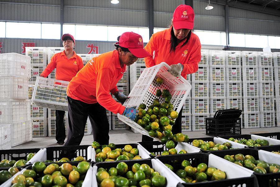 6 Yichang firms ink deals worth $82m