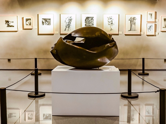 Qingdao exhibition of French academicians' artworks promotes China-France art exchanges