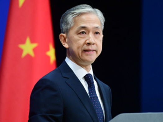 Chinese customs' inspections of imported seafood 'lawful': FM