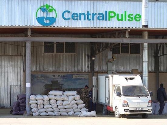 CIIE helps Uzbek entrepreneurs enter world market
