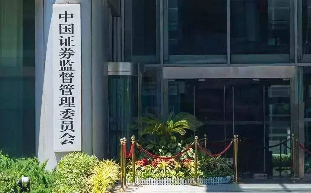 Delaying Ant Group's rush listing responsible move: China's securities regulator