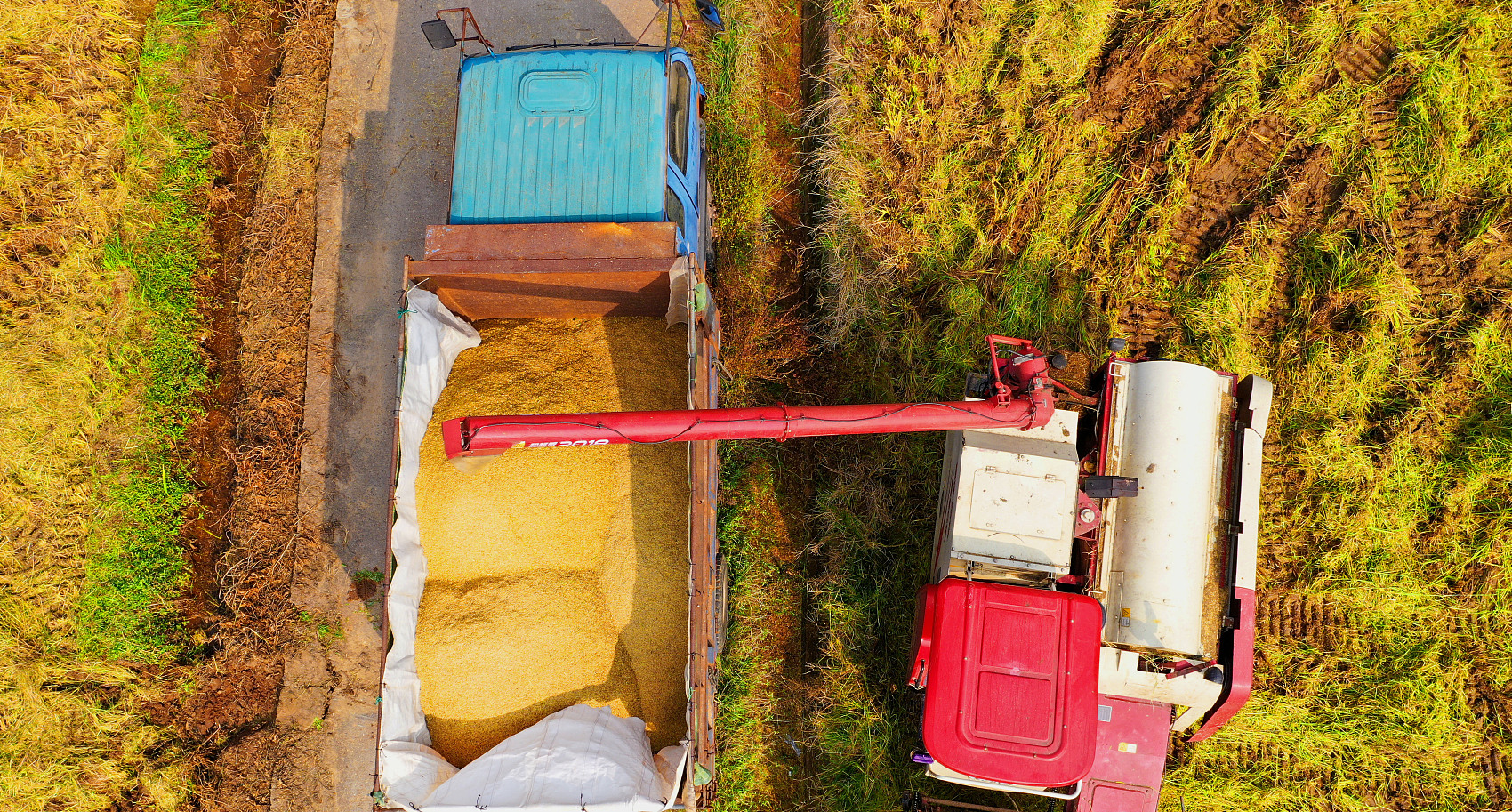 China's agricultural product wholesale prices edge down