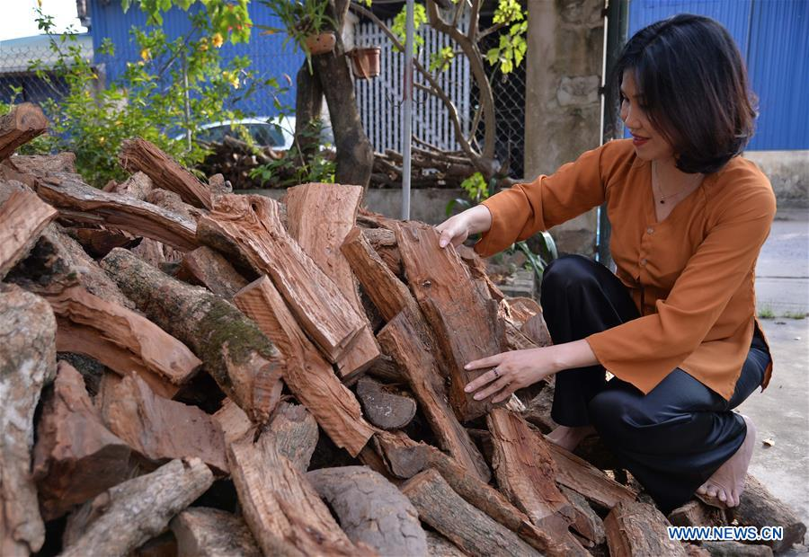 Vietnam's wood products export up 12.4 pct in 10 months