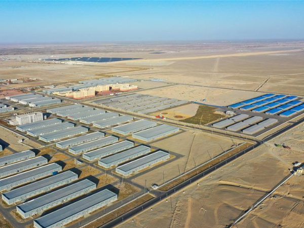 Seven related digital industrial parks established in Qira, Xinjiang