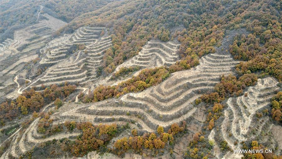 Autumn scenery of Taihang Mountain