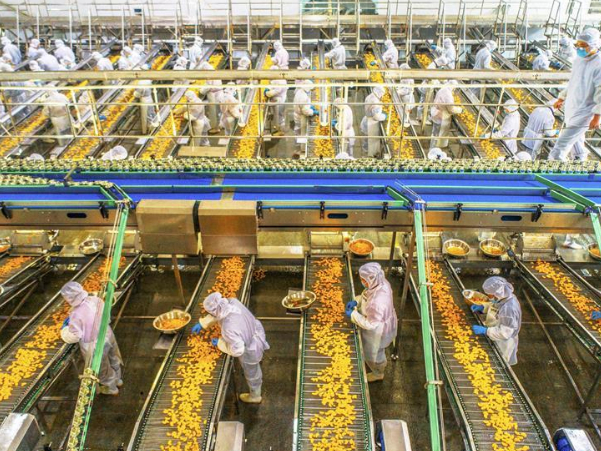 China's food industry posts strong profit growth