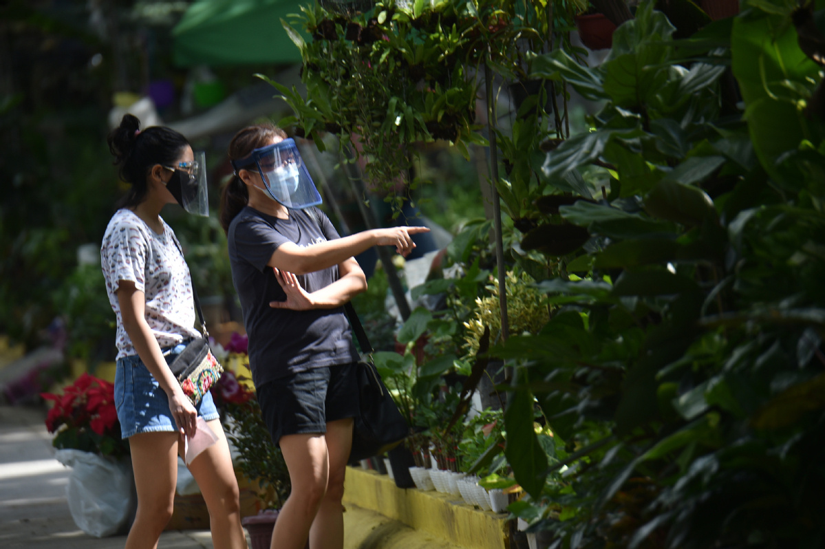 'Plantdemic' hits Philippines as demand for greenery grows