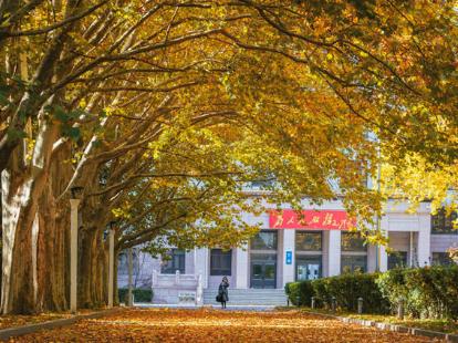 Autumn scenery of Beihang University in Beijing