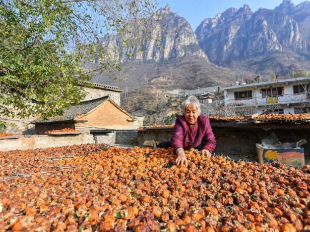 Various measures taken to shake off poverty in Hongni Village of N China