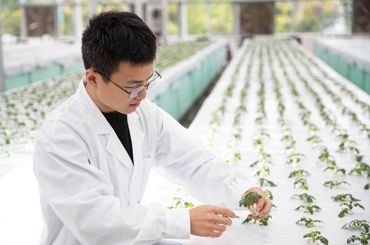 China ranks 1st in 4 major areas of scientific research
