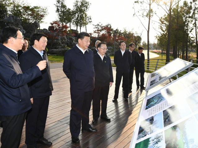Xi stresses building ecological civilization in Yangtze River Delta integration