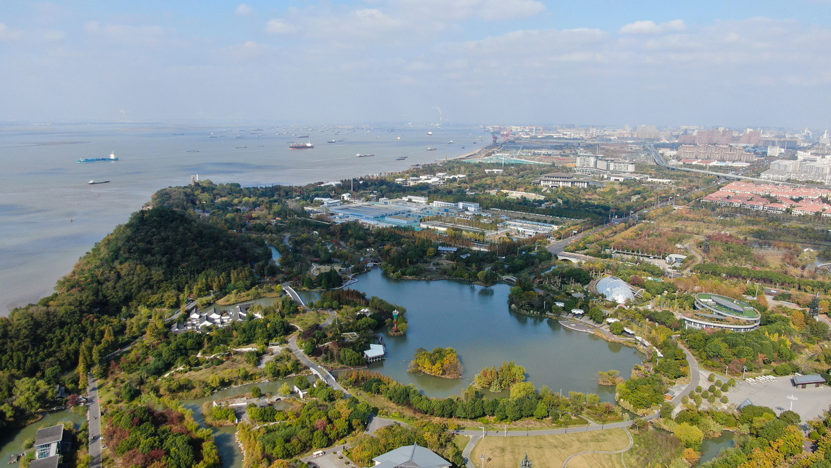 China's 'mother river' Yangtze to lead high-quality development, bring certainty to world