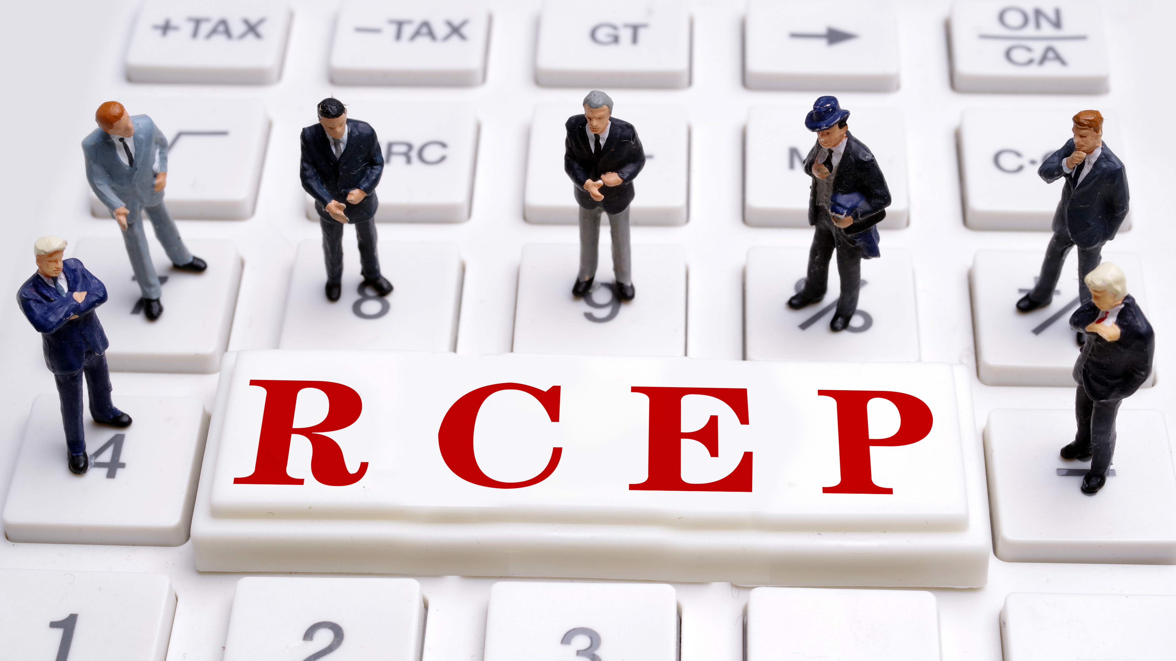 RCEP 'uplifting' amid global recession: Chinese commerce chamber in EU