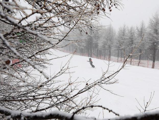 Snowfall hits Chongli in China's Hebei
