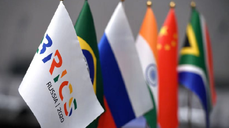 BRICS partnership to help S. Africa recover from COVID-19, says expert